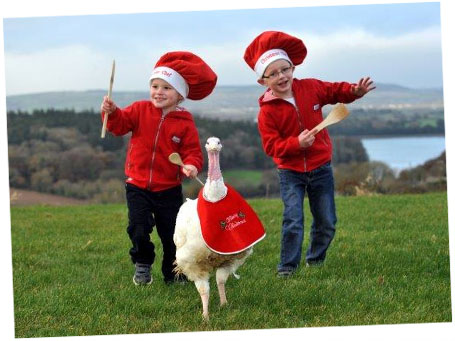free range turkey for christmas